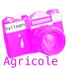 Cadre Agricole